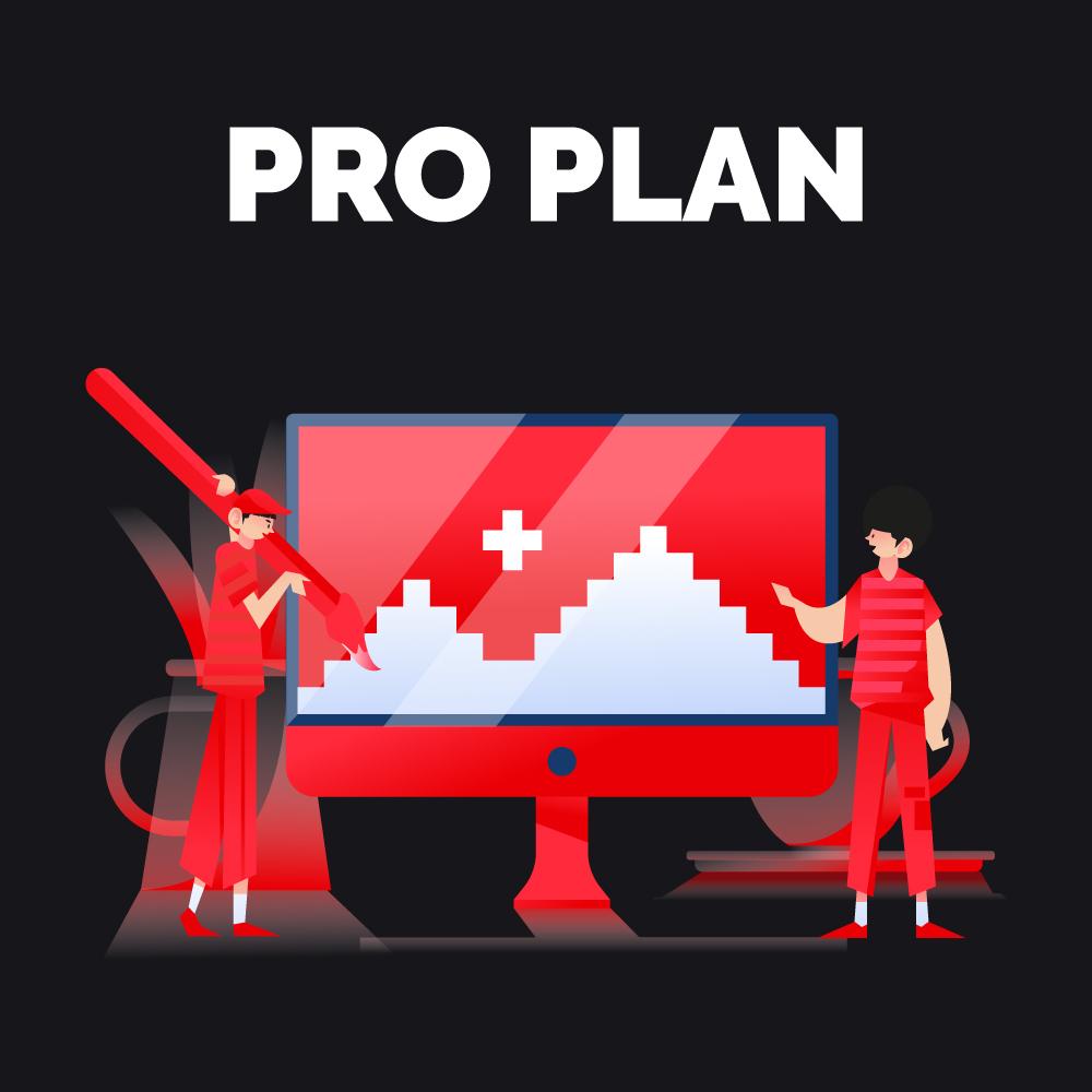 Branding – Pro Plan