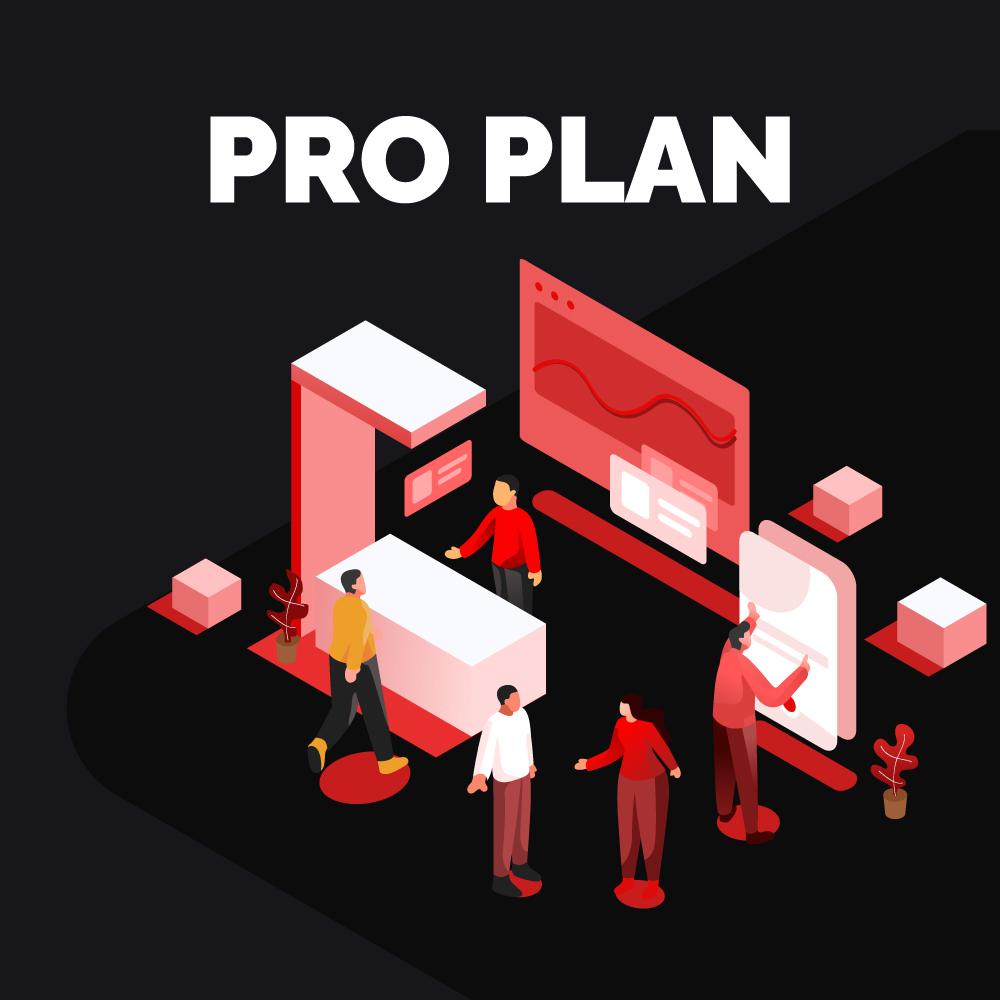 Web Development - Pro Plan